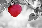 Liebeskugel Herz